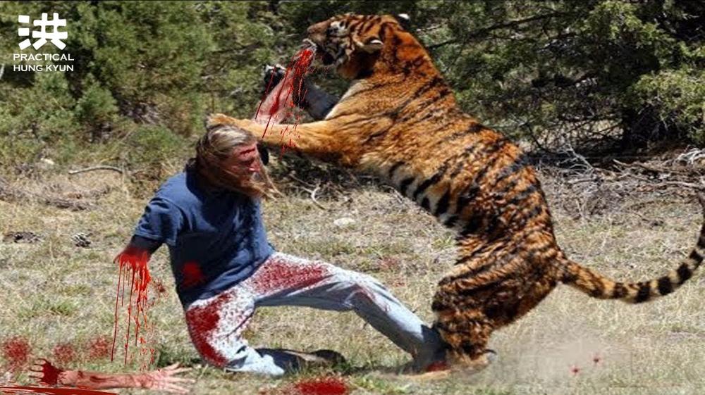 Pět zvířat PHK: Drak, had, tygr, leopard, jeřáb!
