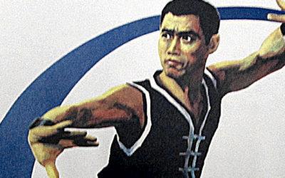 Trénink bojových umění ve škole mistra He Dahaie [video]