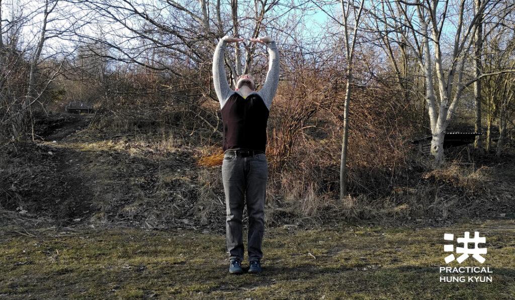 """Můj rok """"vnitřních"""" cvičení (Neigong) pro zdraví a vitalitu: Zkušenosti a výsledky"""